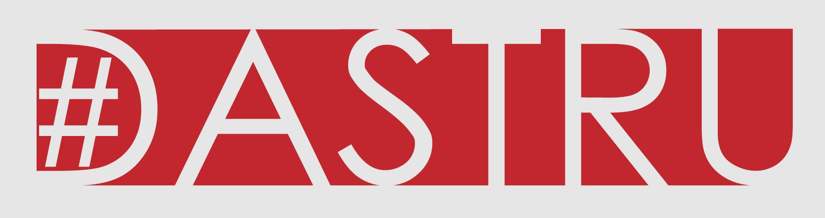 #DASTRU Consulting – Damien A. Schmidt